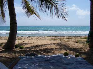 The Island of Vieques